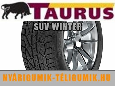 TAURUS SUV WINTER - téligumi